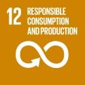 E_SDG goals_icons-individual-cmyk-12